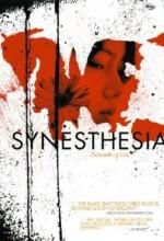 Synesthesia (2005) afişi