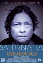 Saturnalia (2013) afişi