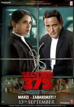 Section 375 (2019) afişi