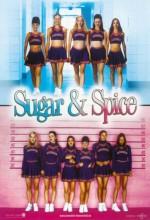 Şeker Ve Baharat (2001) afişi