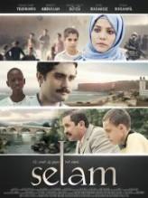 Selam (2013) afişi