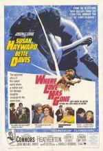 sevgilim nerede (1964) afişi
