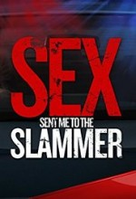 Sex Sent Me to the Slammer (2015) afişi