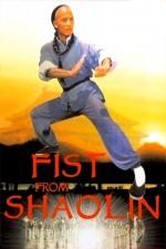 Shaolin Yumrukları