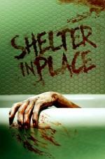 Shelter in Place (2021) afişi