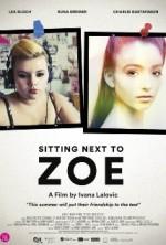 Sitting Next to Zoe (2013) afişi