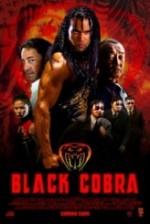 Siyah Kobra (2012) afişi
