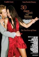 Şöhret Yolu (2004) afişi