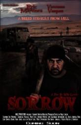 Sorrow (2013) afişi