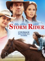 Storm Rider (2013) afişi