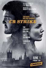 Strike : Kötülük Kariyeri (2018) afişi