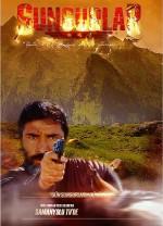 Sungurlar (2014) afişi