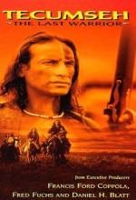 Tecumsch:  The Last Warrior