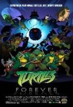 Turtles Forever (2009) afişi