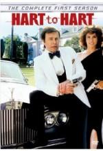 Tehlike Çemberi (1979) afişi