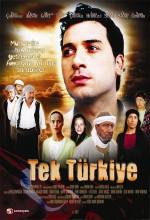 Tek Türkiye (2010) afişi