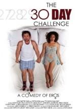 The 30-day Challenge (2011) afişi