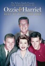 The Adventures Of Ozzie & Harriet (1963) afişi