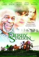 The Derby Stallion (2005) afişi