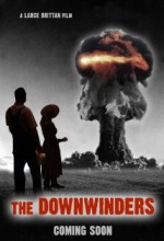 The Downwinders (2010) afişi
