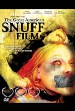 The Great American Snuff Film (2003) afişi