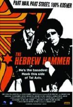 The Hebrew Hammer (2003) afişi