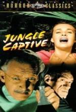The Jungle Captive (1945) afişi