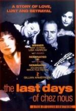 The Last Days Of Chez Nous (1992) afişi