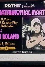 The Matrimonial Martyr (1916) afişi