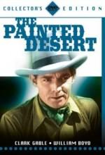 The Painted Desert (1931) afişi