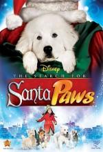 The Search For Santa Paws (2010) afişi