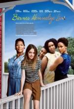 Hayatın Getirdikleri (2008) afişi