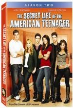 The Secret Life Of The American Teenager (2009) afişi