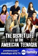 The Secret Life Of The American Teenager (2010) afişi