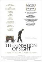 The Sensation of Sight (2006) afişi