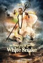 The Sorcerer And The White Snake (2011) afişi