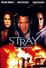The Stray (2000) afişi