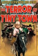 The Terror Of Tiny Town (1938) afişi