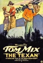 The Texan (1920) afişi