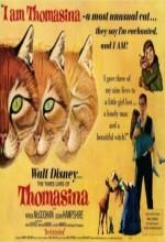The Three Lives Of Thomasina (1964) afişi