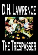 The Trespasser (1929) afişi