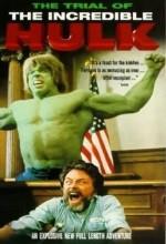 The Trial Of The Incredible Hulk (1989) afişi