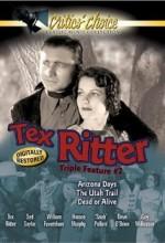 The Utah Trail (1938) afişi