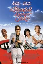 Bir Dalavere Öyküsü (2005) afişi