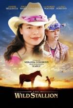 The Wild Stallion (2009) afişi