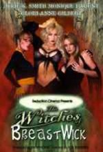 The Witches Of Breastwick (2005) afişi