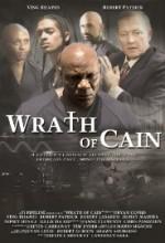 Cain'in Gazabı (2010) afişi