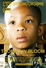 Thomas In Bloom (2006) afişi