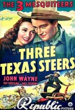 Three Texas Steers (1939) afişi