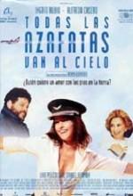 Every Stewardess Goes to Heaven (2002) afişi